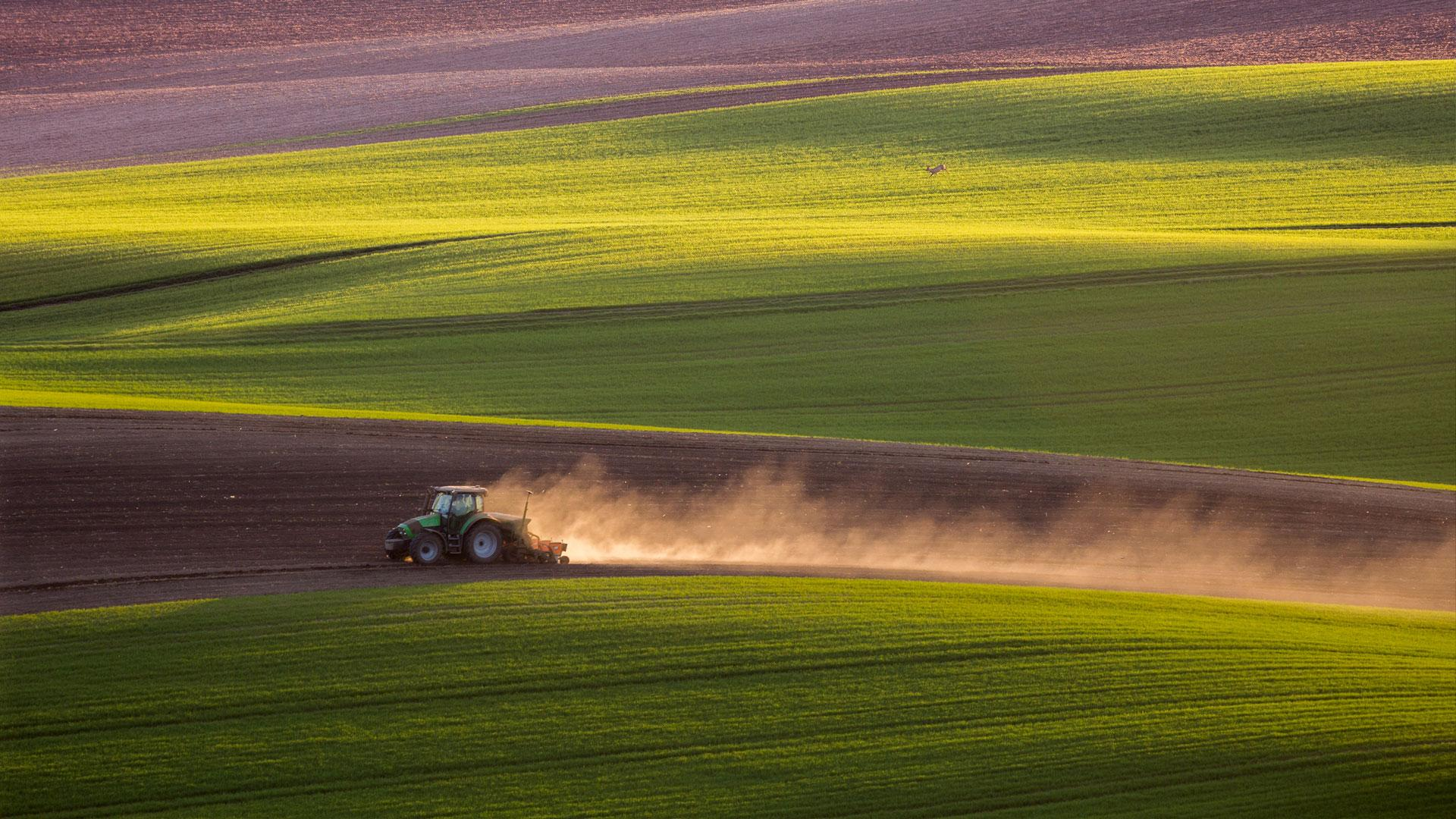 Farming Landscape