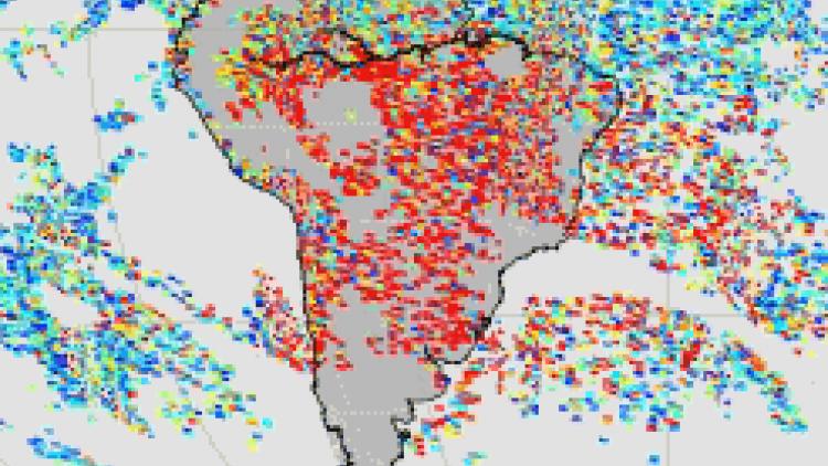 The chemical fingerprint of Amazonian fires