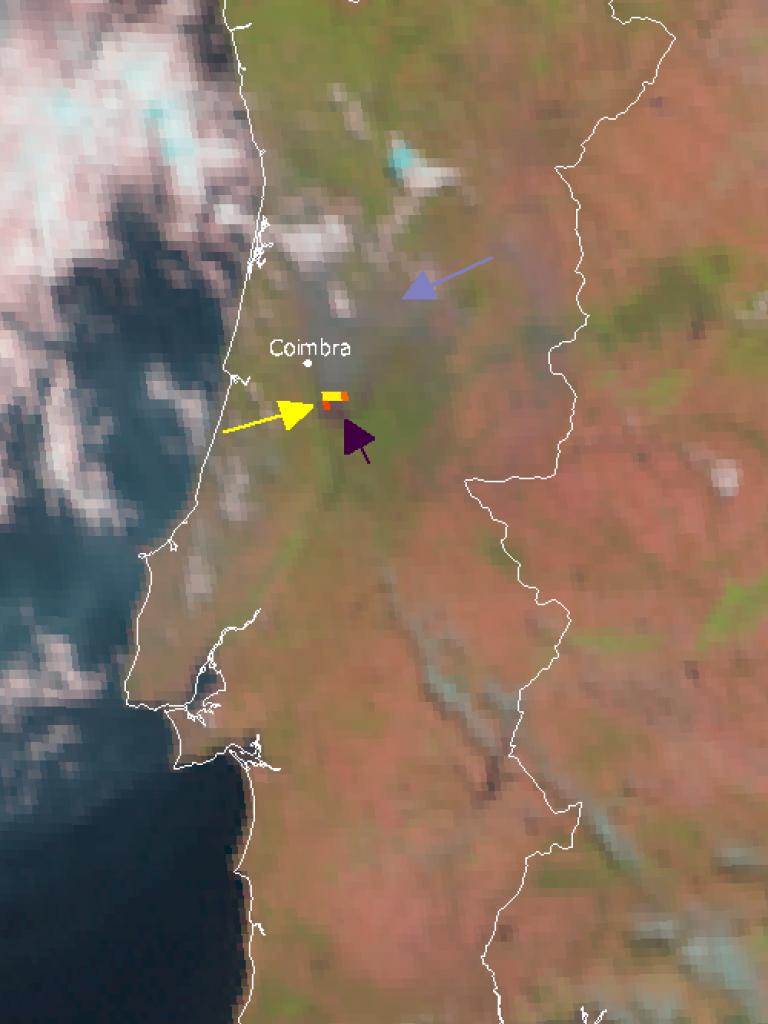Devastating wildfires in Portugal